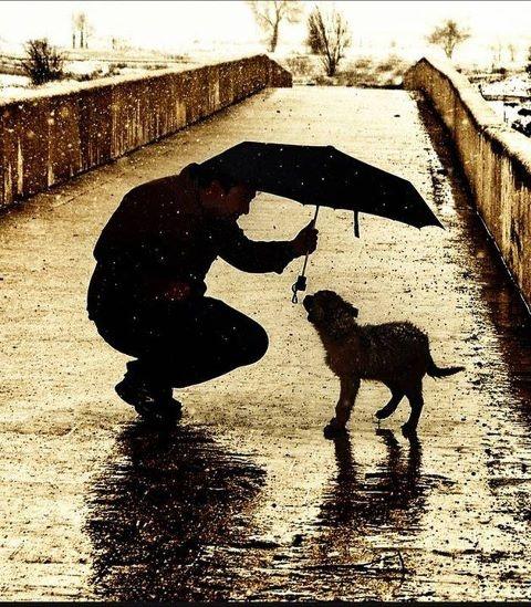 kind man